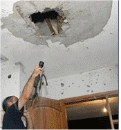 Damage - Ceiling
